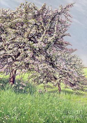 Painting - Pommiers Fleuris by Carlos Schwabe