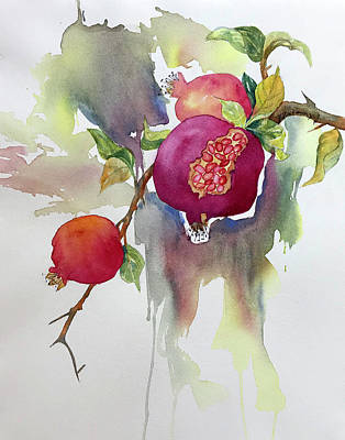 Painting - Pomegranates by Hilda Vandergriff