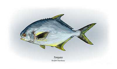 Angling Painting - Pompano by Ralph Martens