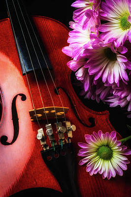 Violin Photograph - Poms And Violin by Garry Gay