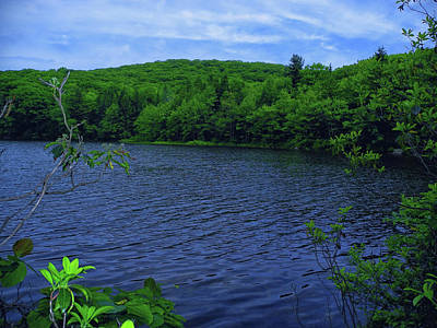 Photograph - Pond Along The Ma At by Raymond Salani III