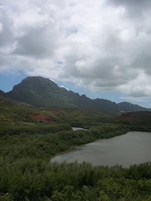 Photograph - Pond And Mountain Landscape by Michelle Miron-Rebbe