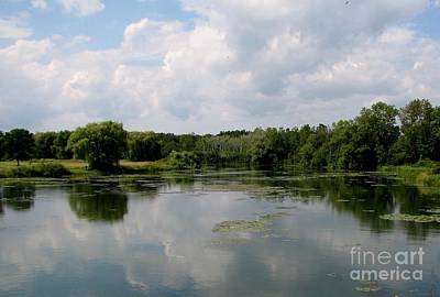 Pond At Beaver Island State Park In New York Art Print