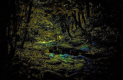 Photograph - Pond At Night by Cathy Harper