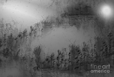 Pond By Moonlight Art Print by John Krakora