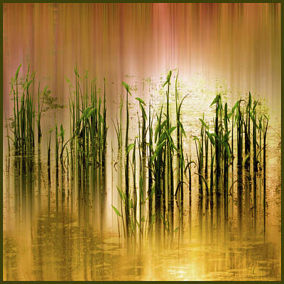 Pond Grass Abstract   Art Print