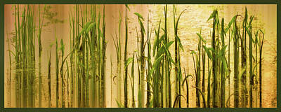 Pond Grass Abstract Panel Art Print