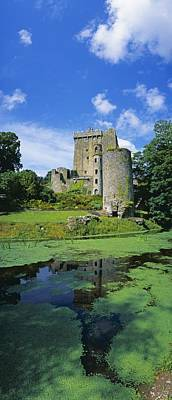Photograph - Pond In Front Of A Castle, Blarney by The Irish Image Collection