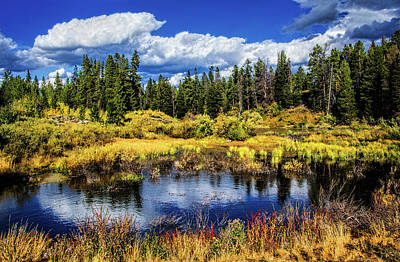 Photograph - Pond In The Tetons by Carolyn Derstine