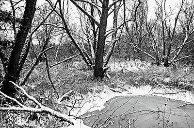 Photograph - Pond In The Woods Black And White by Debbie Oppermann
