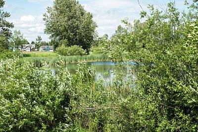 Photograph - Pond In Vanderyacht by Tom Cochran
