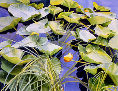Water Lily Pond Painting - Pond Lilies by Sharon Freeman