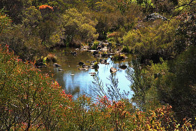 Photograph - Pond Near Armidale by Nareeta Martin