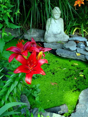 Photograph - Pond Of Peace by Ed Weidman