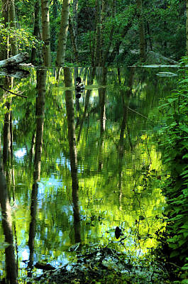 Photograph - Pond On Gabrielino Trail by Viktor Savchenko