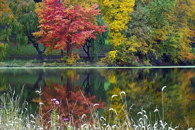 Photograph - Pond Reflect by Andrew Kazmierski