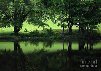 Pond Reflect Print by Karol Livote