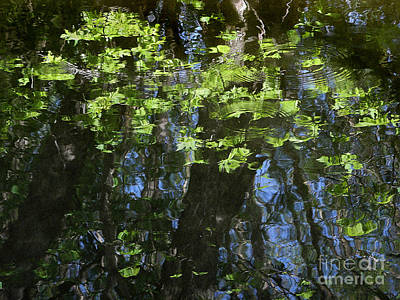 Impressionist Photograph - Pond Reflection 1 by Janeen Wassink Searles