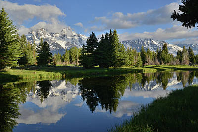 Photograph - Pond Reflection At Schwabacher Landing by Ray Mathis