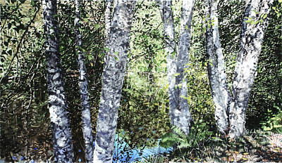 Pond Reflection Art Print by Perry Woodfin