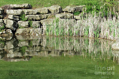 Photograph - Pond Reflection by Roberta Byram
