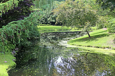 Photograph - Pond Reflections Dow Gardens 3 062618 by Mary Bedy