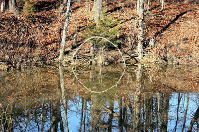 Photograph - Pond Reflections In Fall by Sheila Brown