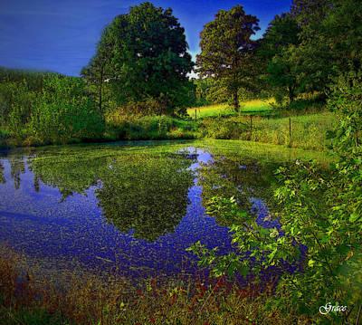 Pond Reflections Art Print by Julie Grace
