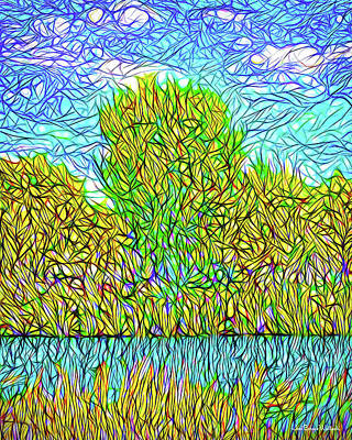 Digital Art - Pond Sky Convergence - Lake Reflections In Boulder County Colorado by Joel Bruce Wallach