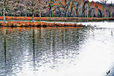 Photograph - Pond View by Gina O'Brien