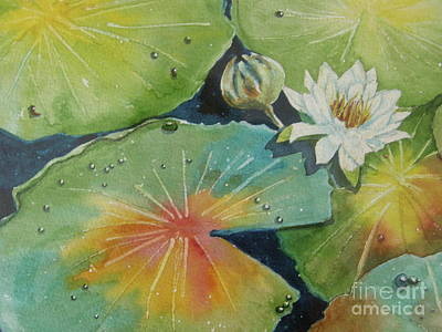 Wall Art - Painting - Pond Water Lily by Midge Pippel