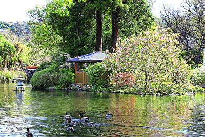 Photograph - Pond With Pagoda by Nareeta Martin