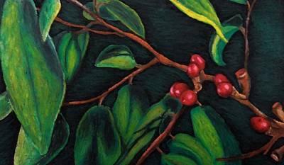 Drawing - Pondberry by Ashley Heath