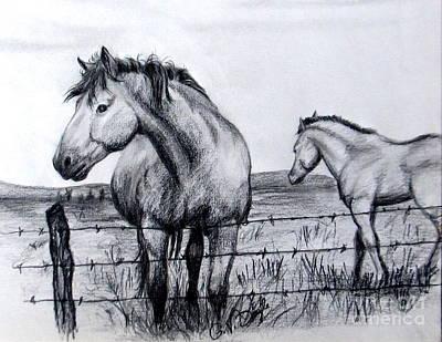 Ponder Texas Horses Original