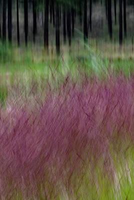 Ponderosa With Grass Art Print