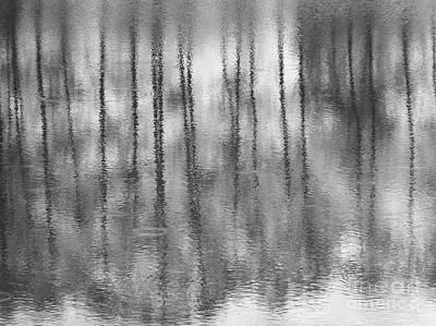 Pondpoland Art Print