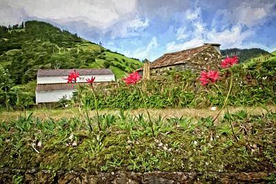 Photograph - Ponta Delgada Countryside by Alice Gipson