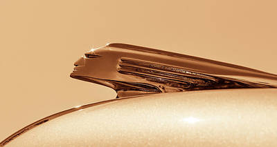 Photograph - Pontiac Gold by Caitlyn Grasso