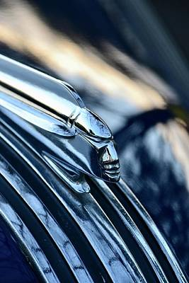 Photograph - Pontiac Hood by Dean Ferreira