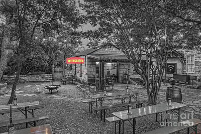 Photograph - Pontotoc Vineyard Weingarten_2 by Sam Stanton