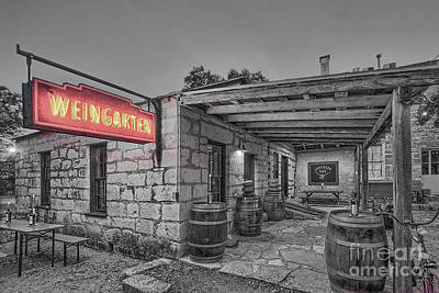 Photograph - Pontotoc Vineyard Weingarten_6 by Sam Stanton