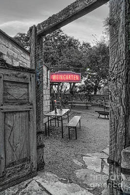 Photograph - Pontotoc Vineyard Weingarten_8 by Sam Stanton