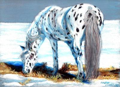 Pony At Winter Pasture Art Print by Angela Finney