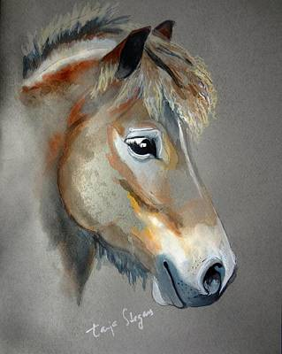 Painting - Pony Boy by Tarja Stegars