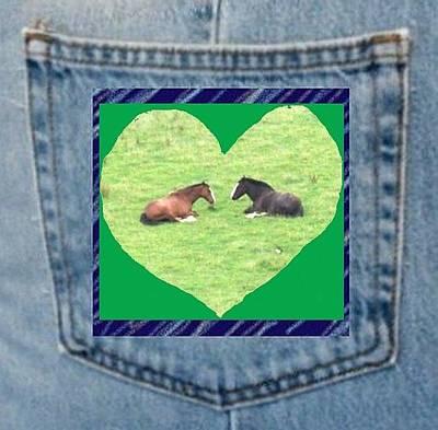 Photograph - Pony Pocket by Julia Woodman