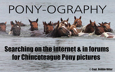 Photograph - Pony Saying T- Shirt by Captain Debbie Ritter