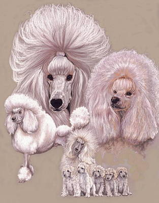 Drawing - Poodle by Barbara Keith