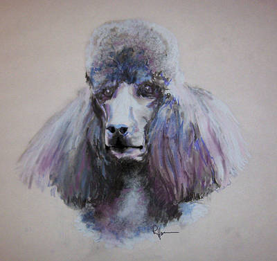 Poodle In Blue Art Print by Rachel Hames