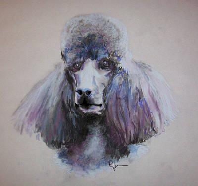 Poodle In Blue Art Print