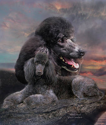 Mixed Media - Poodle Rock by Carol Cavalaris